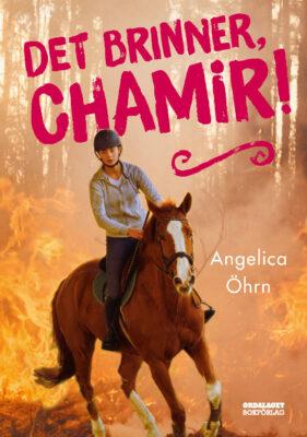 Book Cover: Det brinner, Chamir!