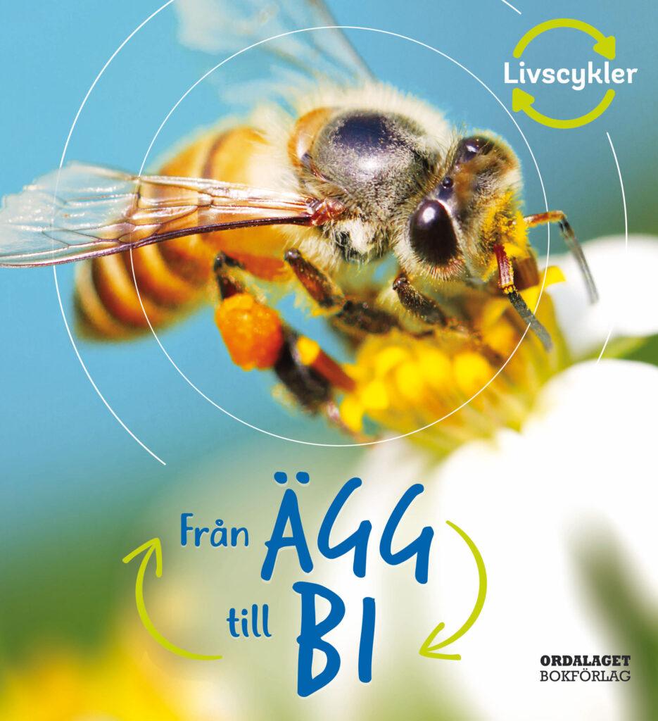 Book Cover: Från ägg till bi